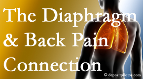 Shoreline Medical Services/ Hutter Chiropractic Office recognizes the relationship of the diaphragm to the body and spine and back pain.