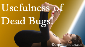 Hutter Chiropractic Office finds dead bugs quite useful in the healing process of Groton back pain for many chiropractic patients.