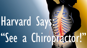 Groton chiropractic for back pain relief urged by Harvard